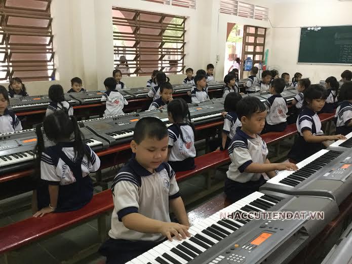 đàn organ cho dự án trường học, organ cho học sinh, organ cho giáo viên