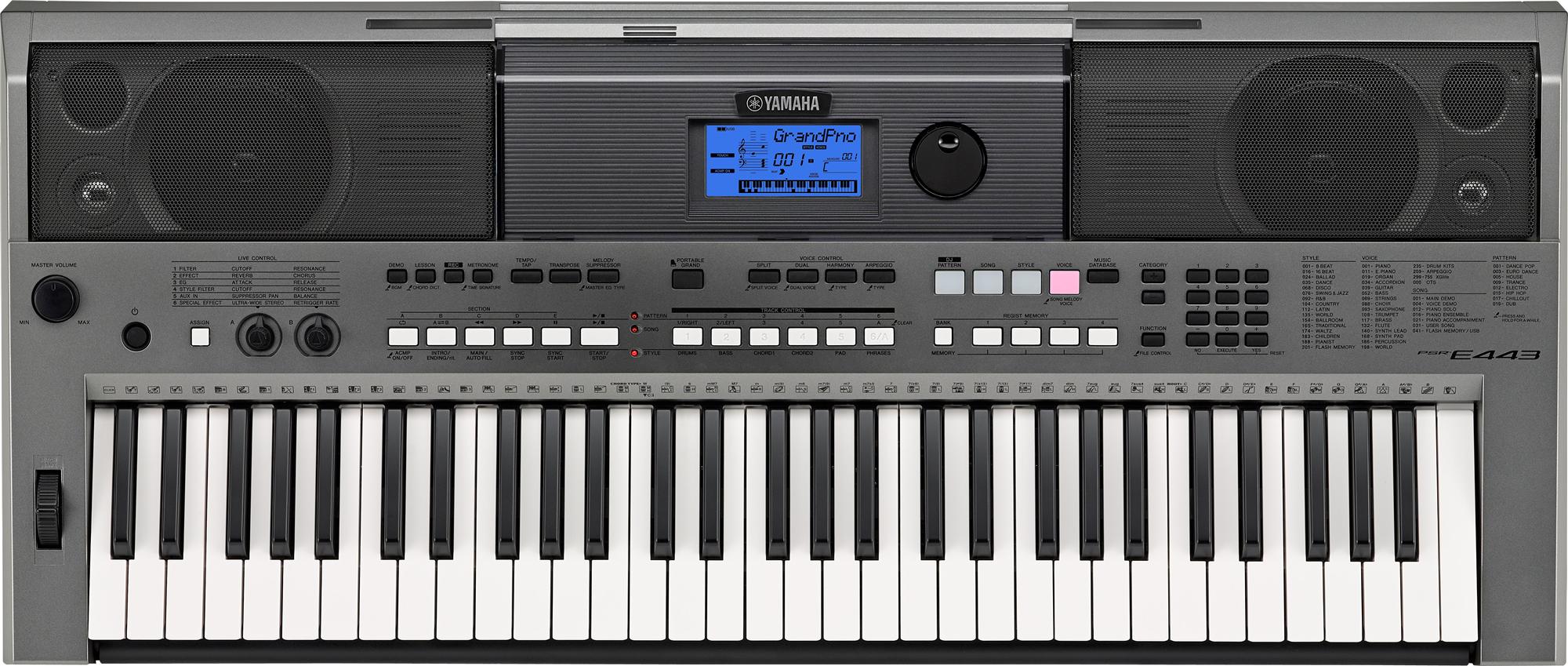 Dan Organ Yamaha E